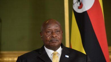 Photo of Uganda to seek $190 mln from World Bank to cushion coronavirus blow