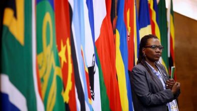 Photo of Africa Must Trade As A Bloc: Size Does Matter In Economics