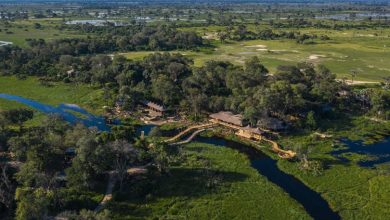 Photo of Botswana Is Ready to Welcome Tourists Again – and the Safari Possibilities Are Endless