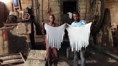 Photo of Can Made in Africa transform the continent's leather industry?