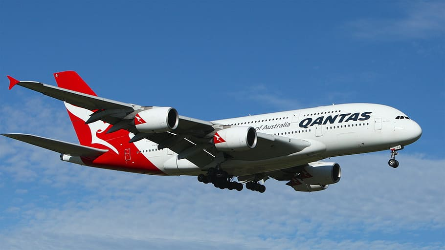 Photo of Australia's National Airline Qantas reopens Bookings