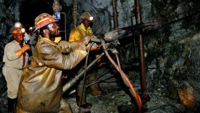 Photo of Zimbabwe's Kuvimba seeks $1 billion for platinum, gold projects